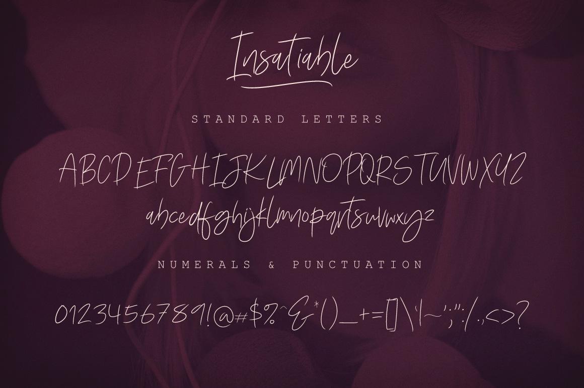 Insatiable Script Font example image 2