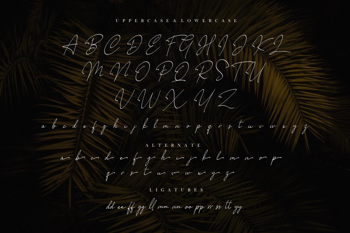 Millano // Signature Font example image 11