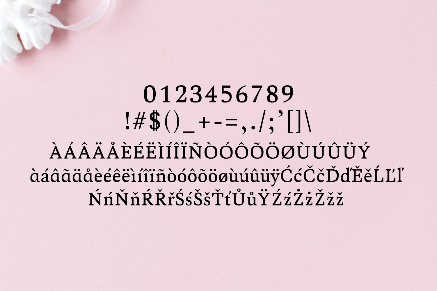 Aderes Serif Font Family example image 4