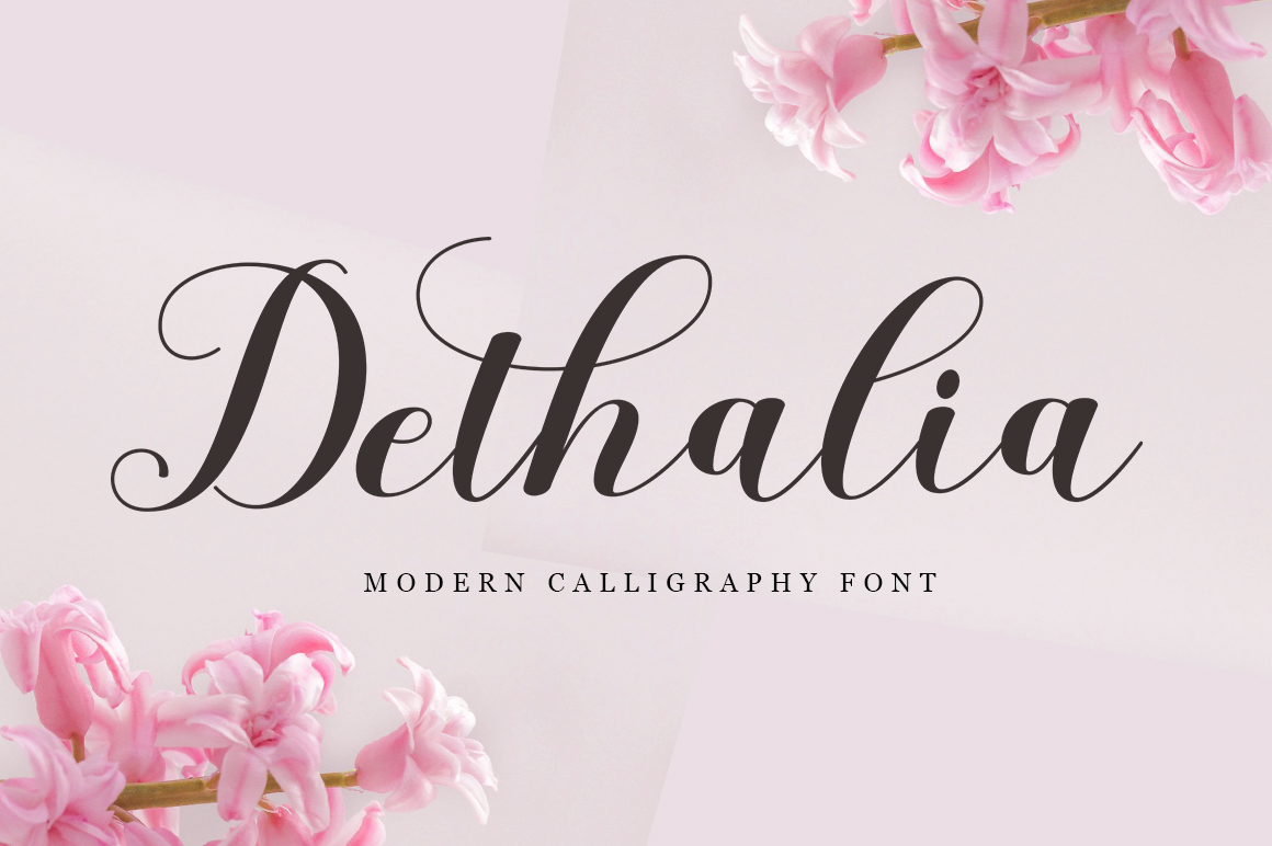 Font Collection | 12 Font example image 3