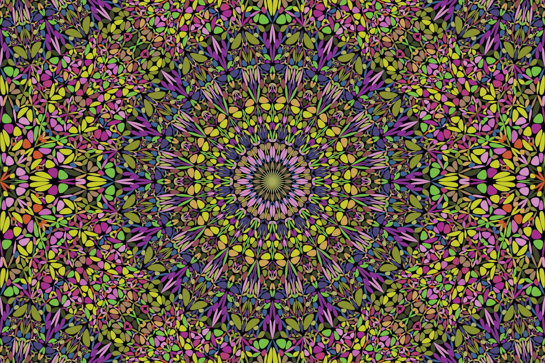 48 Seamless Floral Mandala Patterns example image 8