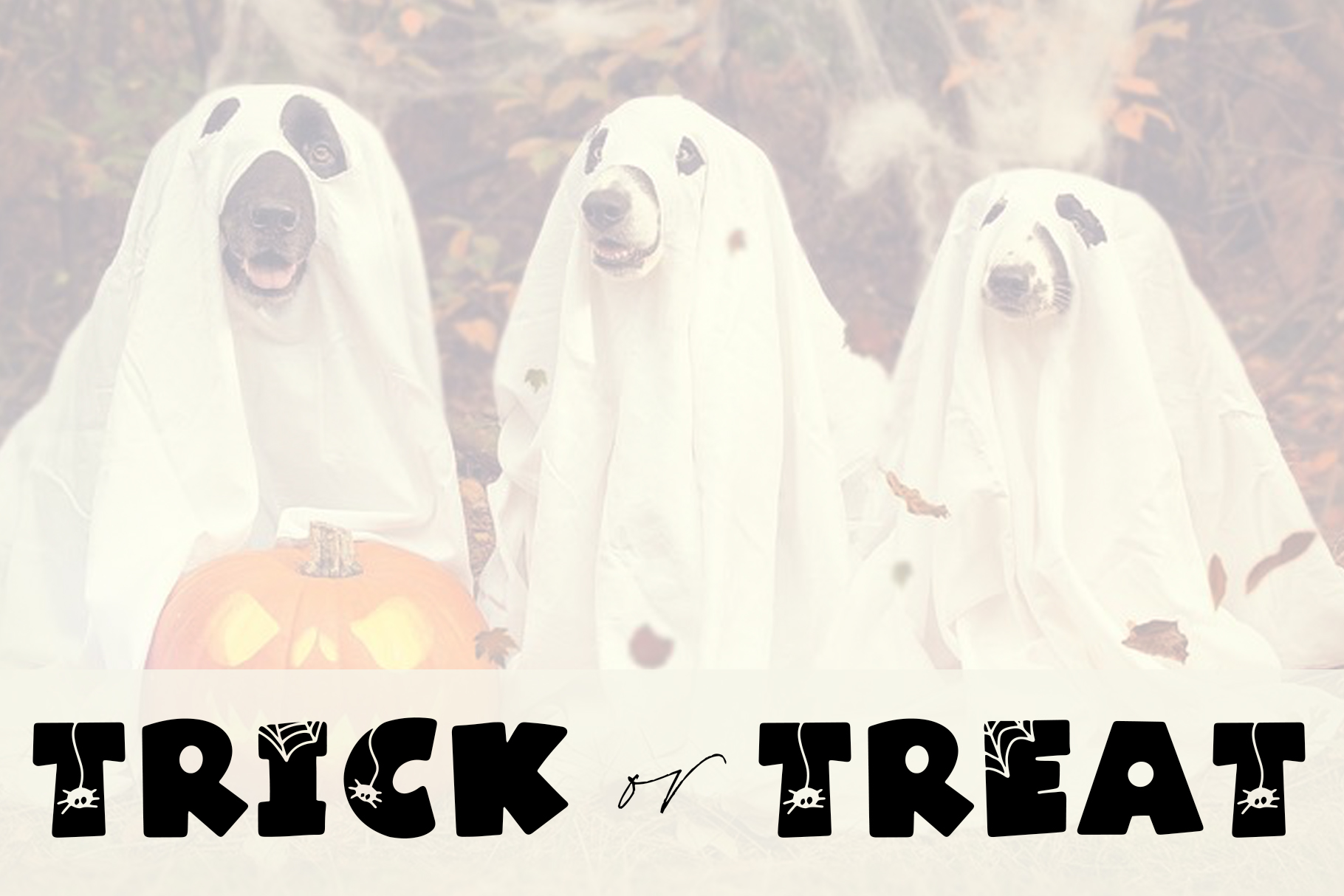 Spooky - A Quirky Halloween Font example image 5