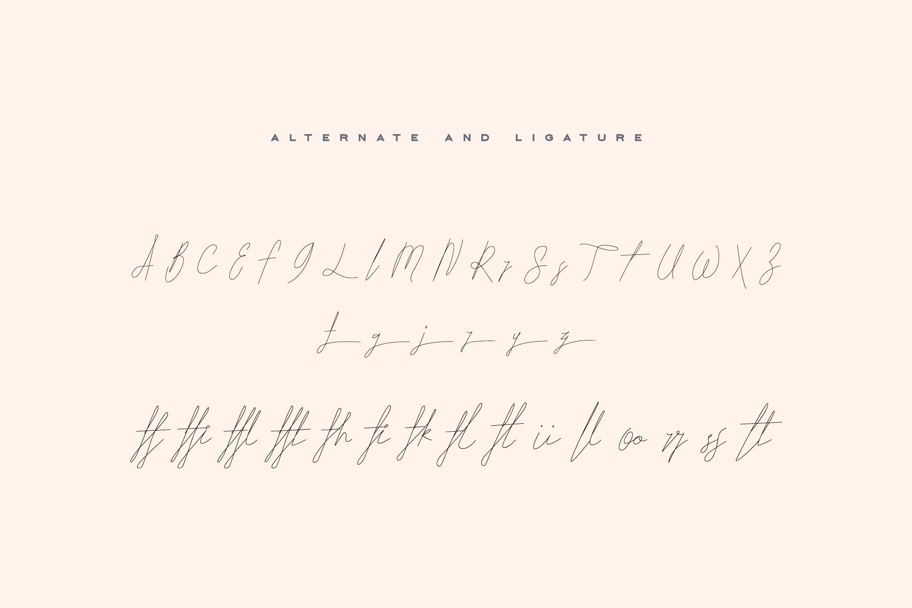 ARK Seychelle - Exotic Monoline Font example image 8