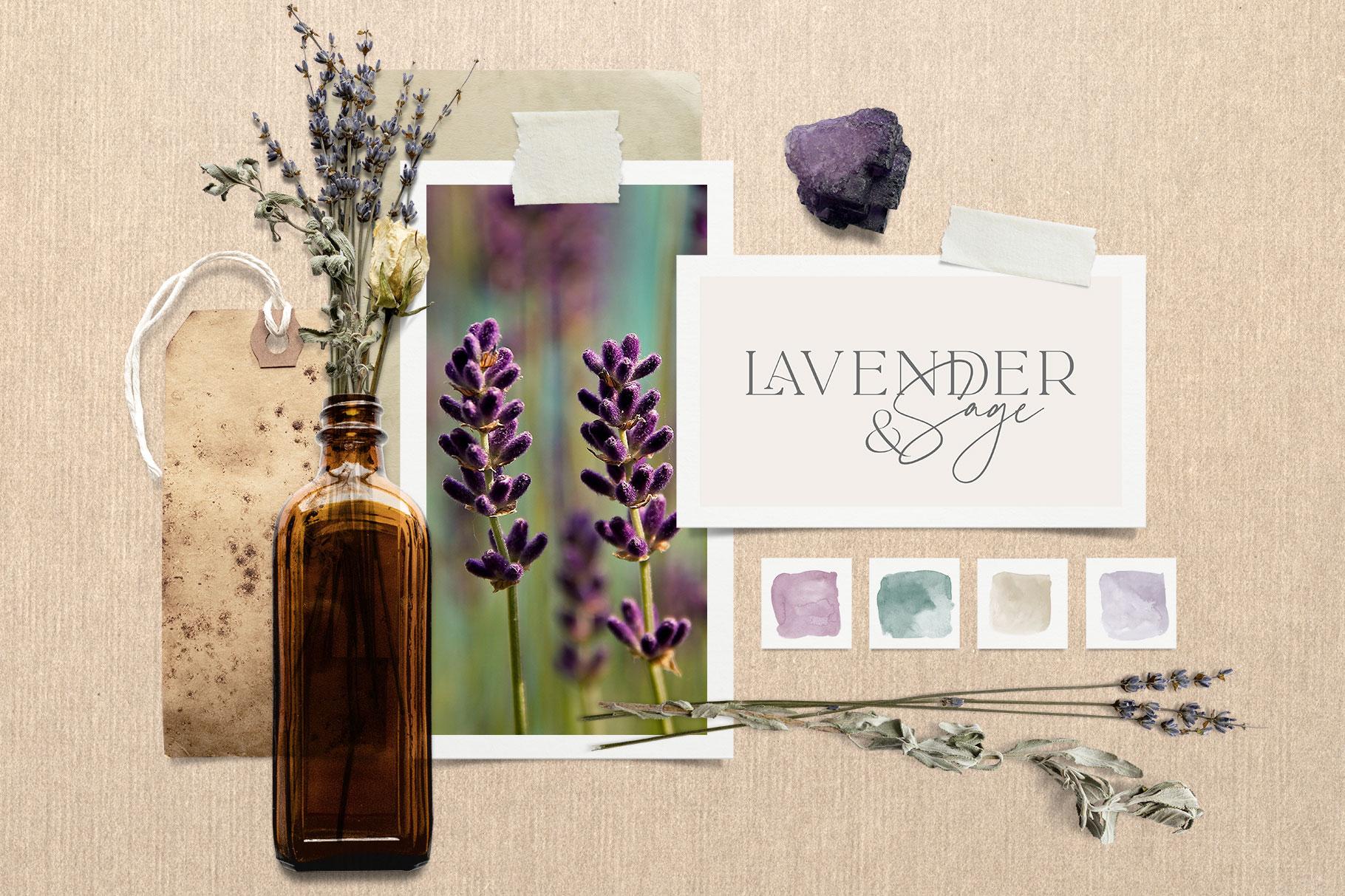 Botanical Moodboard Scene Creator example image 10