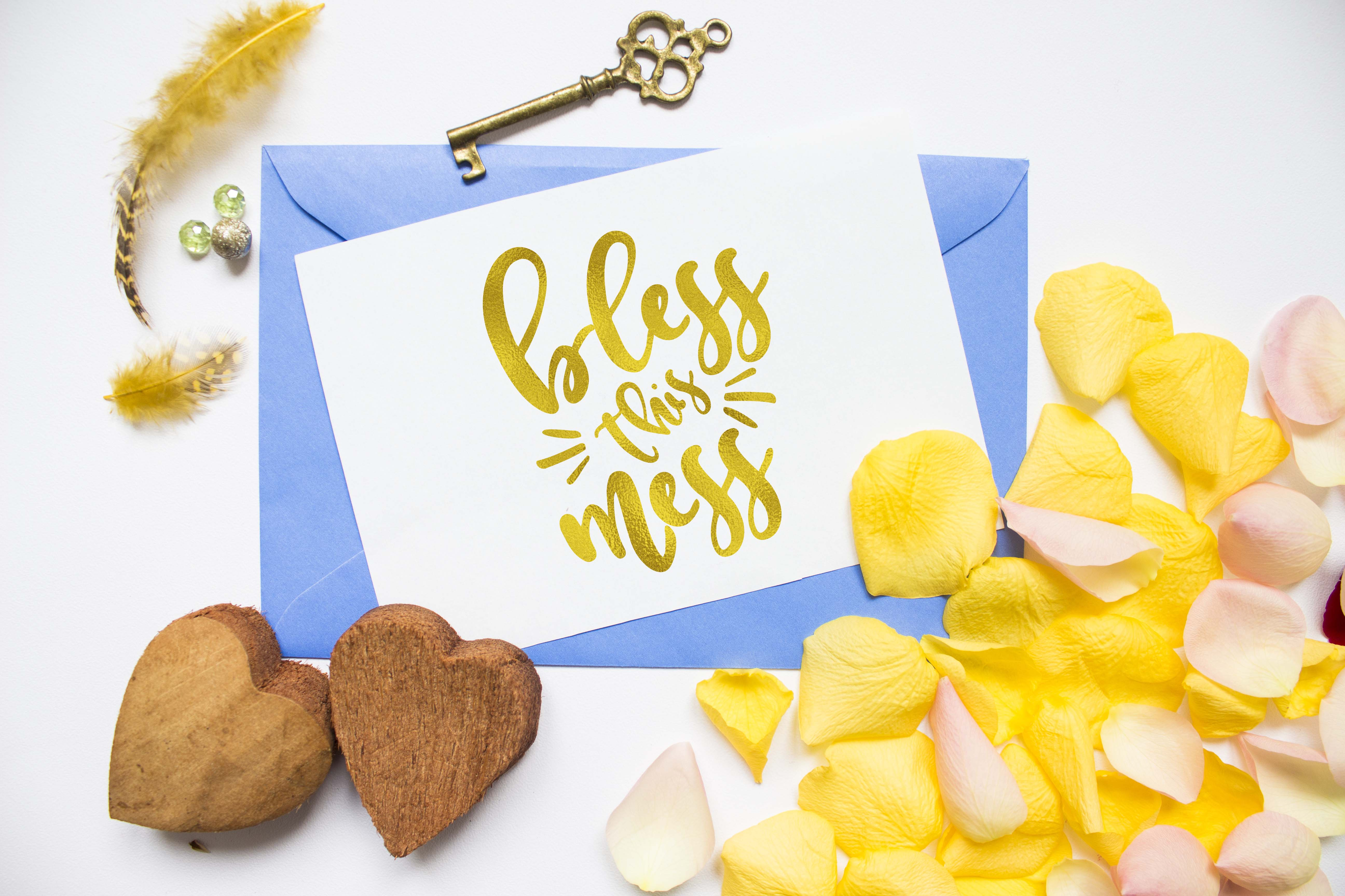 Bless this mess SVG PNG EPS DXF, Funny svg design for cut example image 3