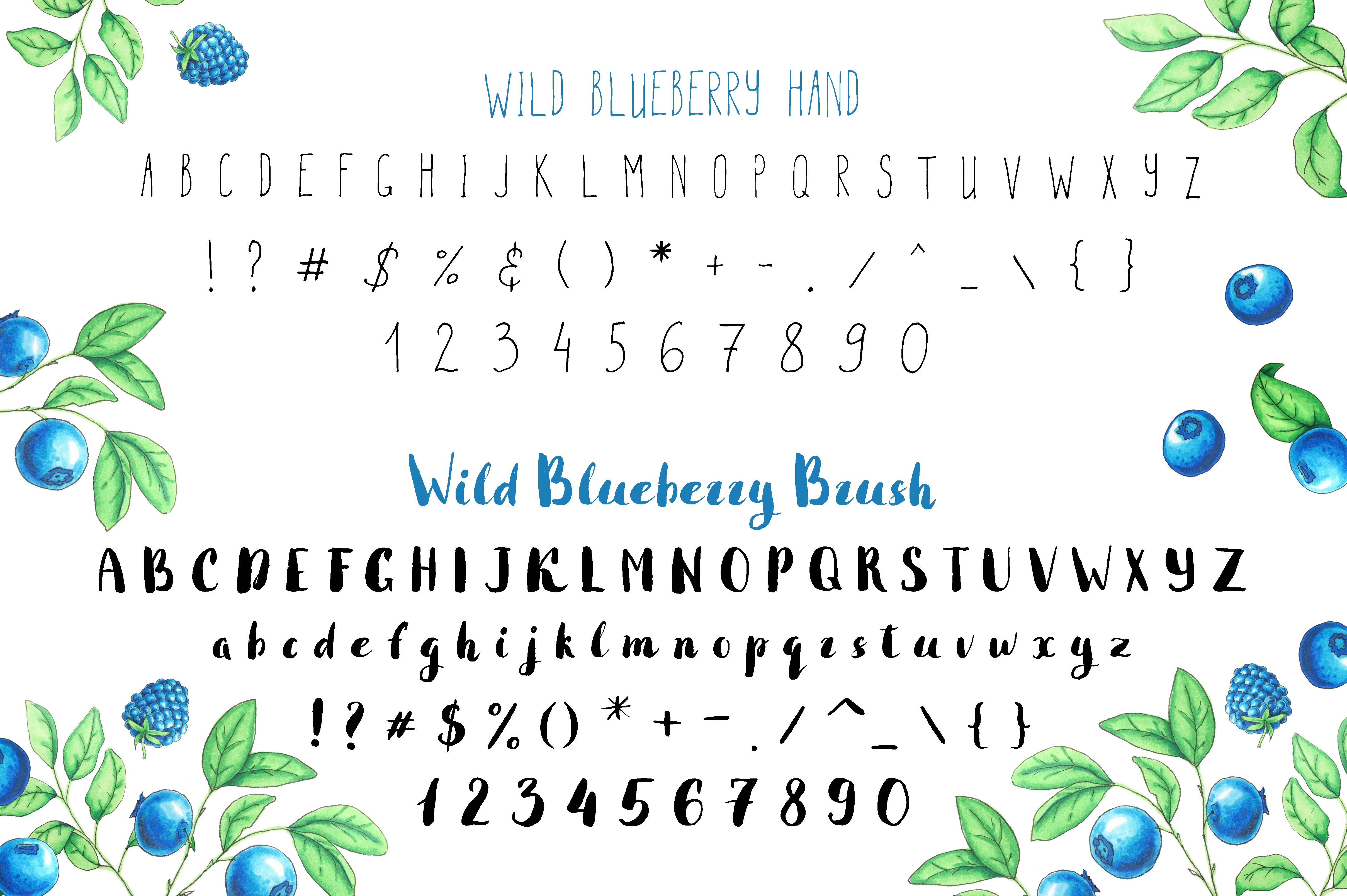 Wild Blueberry Font Duo example image 3