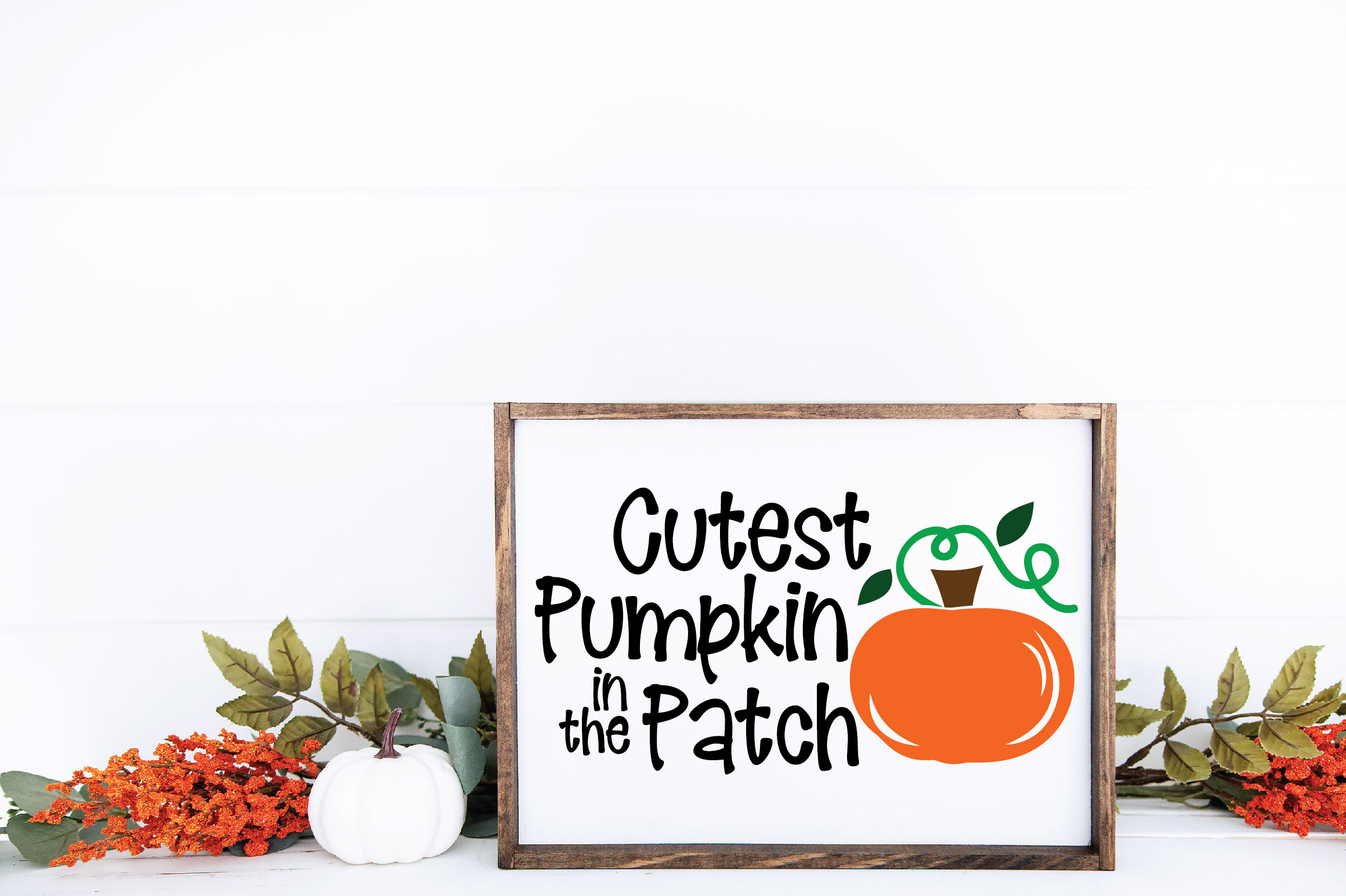 Cutest Pumpkin in the Patch SVG Cut File - Fall Pumpkin SVG example image 5
