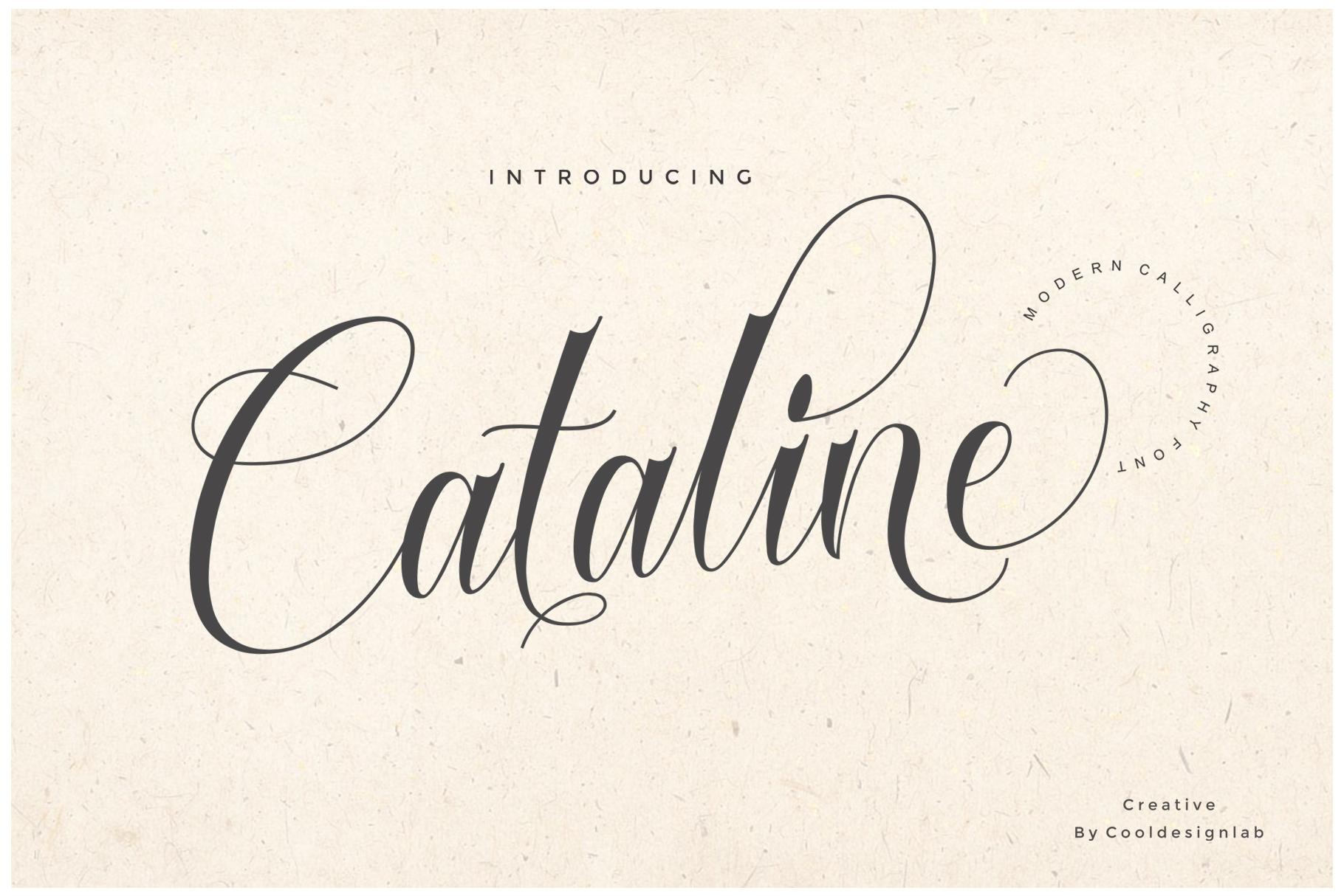 Cataline Script example image 1