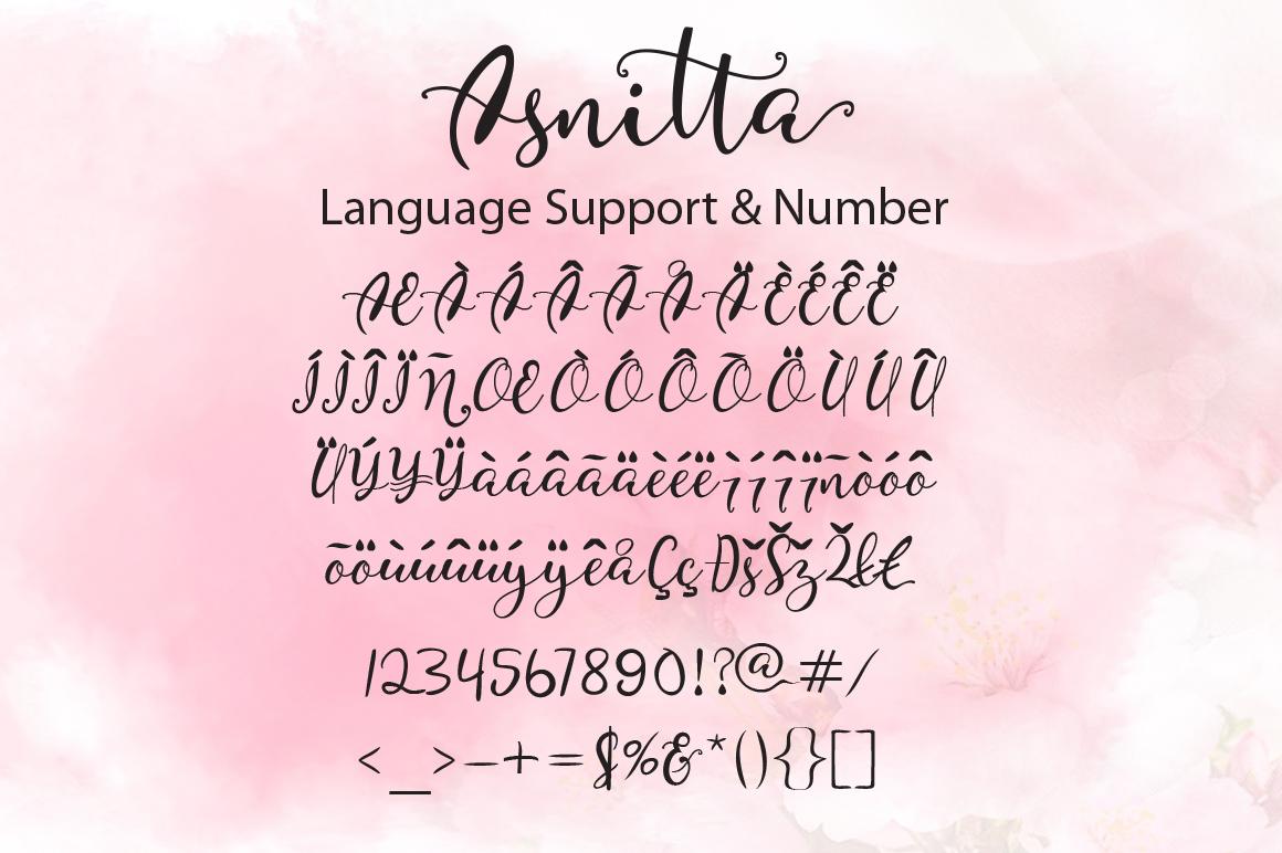 Asnitta example image 8