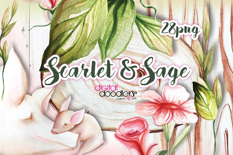 Scarlet & Sage example image 5
