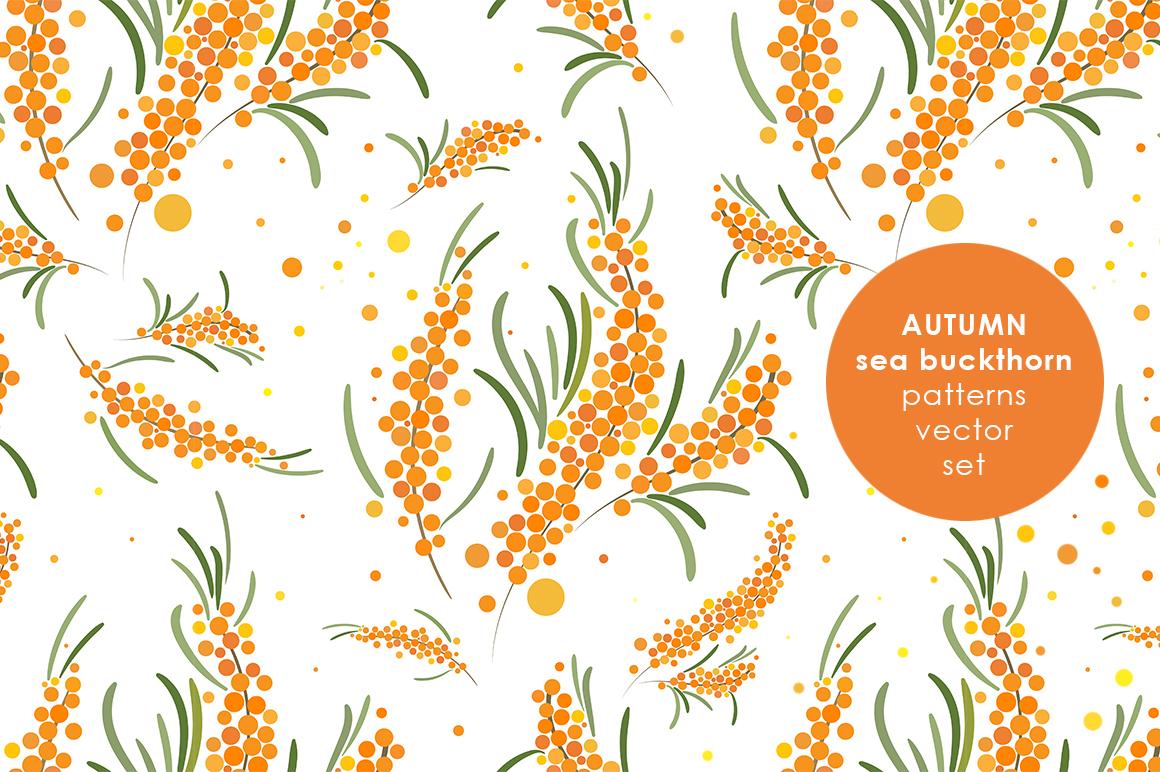 Sea buckthorn patterns set. example image 1
