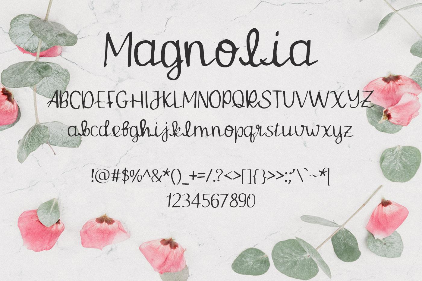 Magnolia Font example image 2