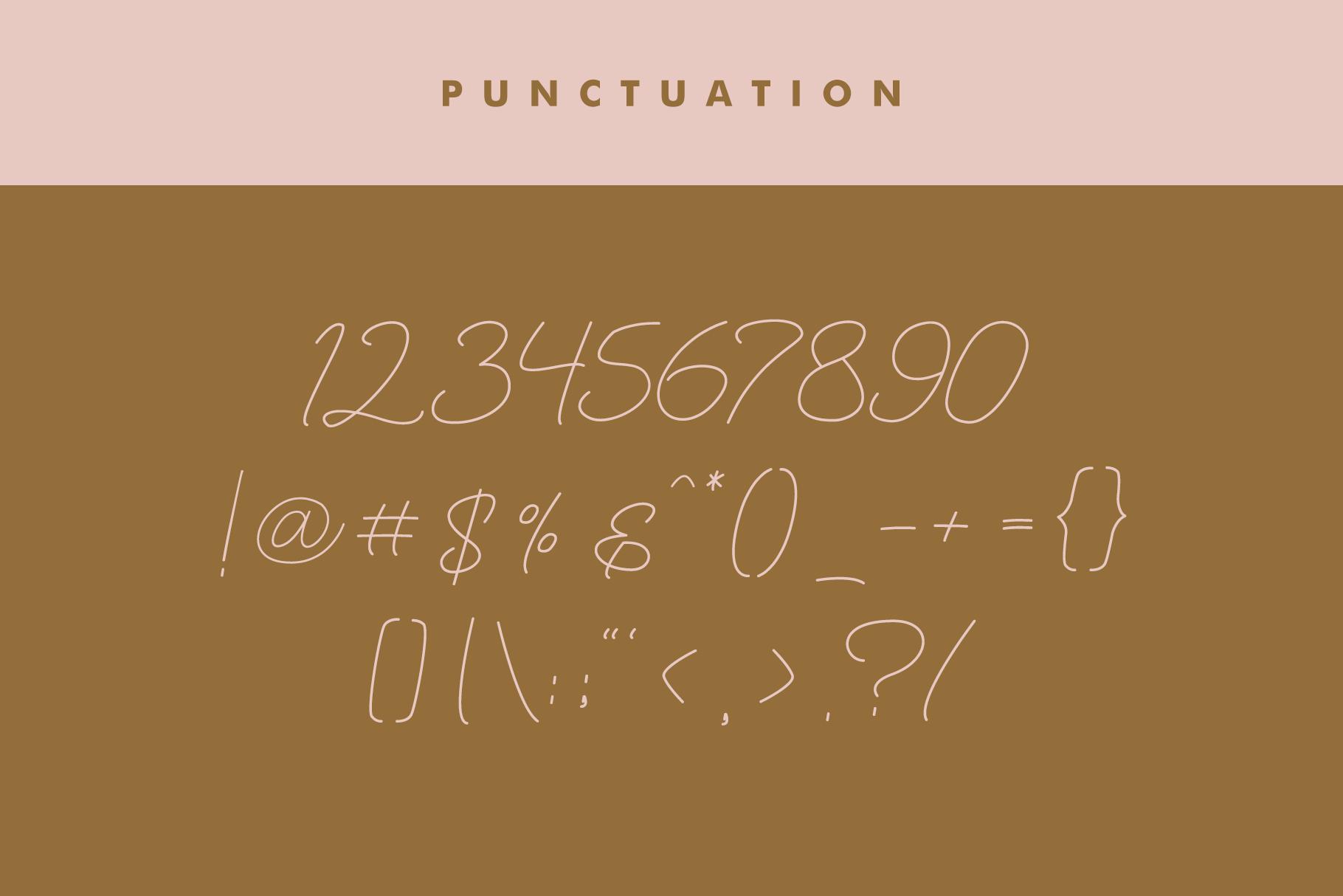 Maldonis Monoline Script example image 12