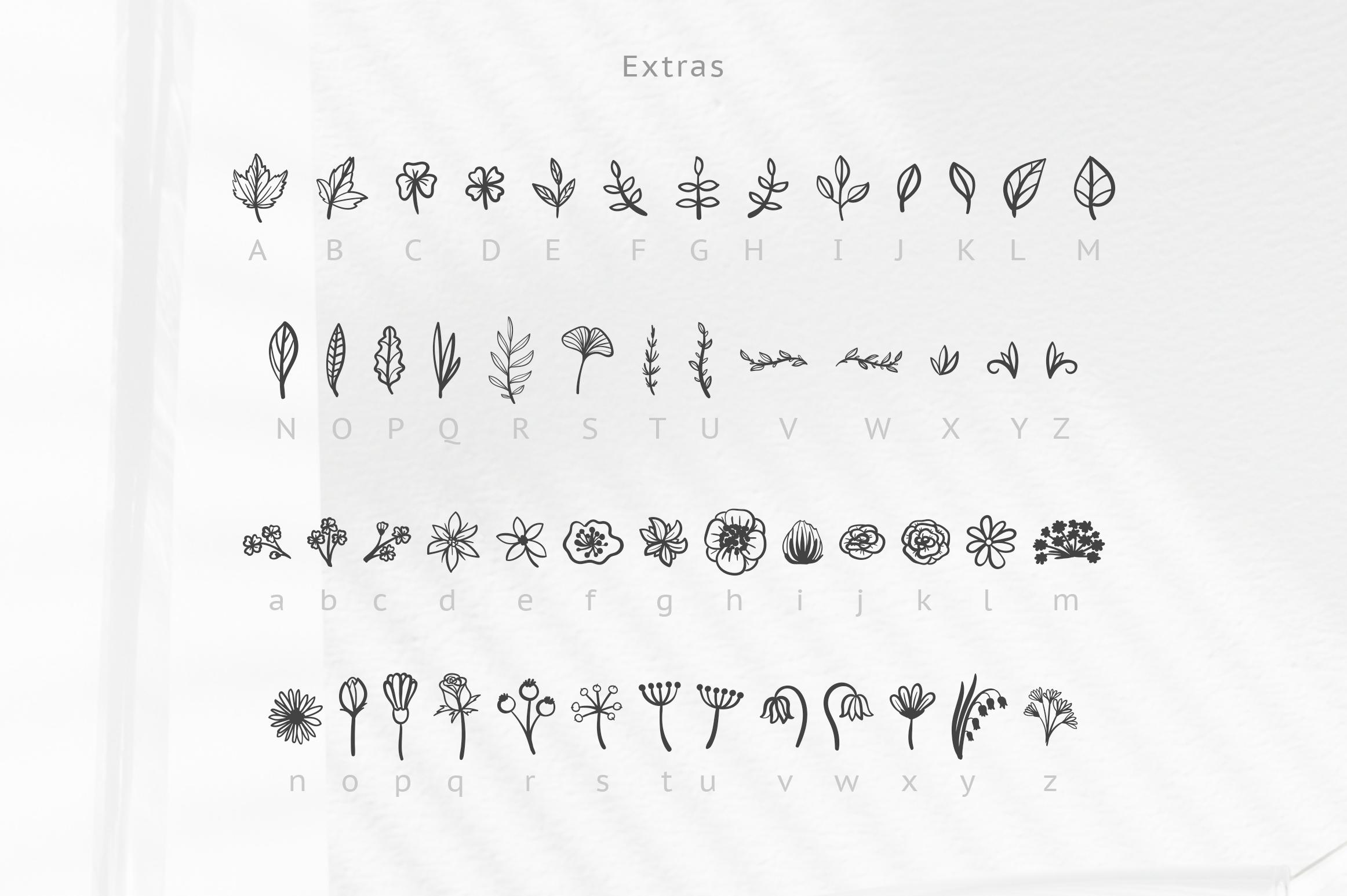 Herbarium font. New Language Update! example image 2