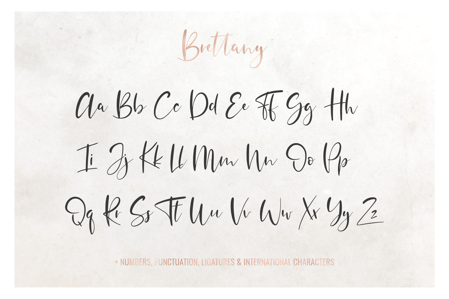 Brettany Script Font example image 3