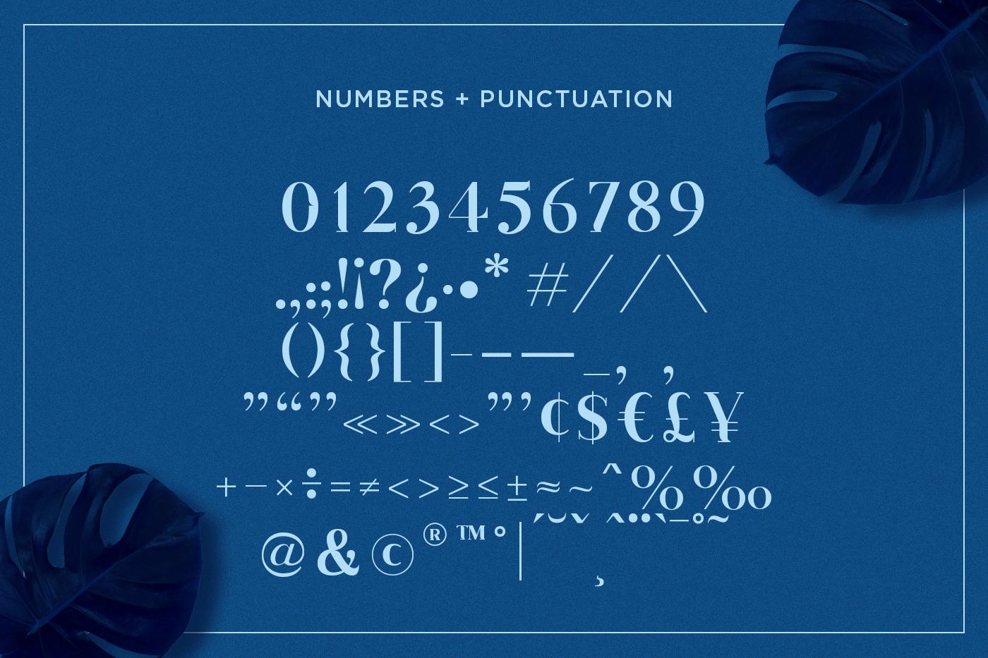Geovani | Modern Font example image 8
