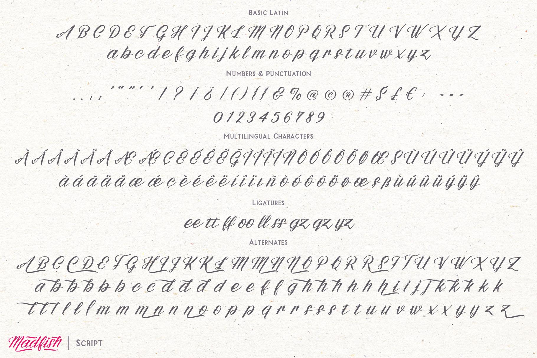 Madfish Font Family  Extras example image 10