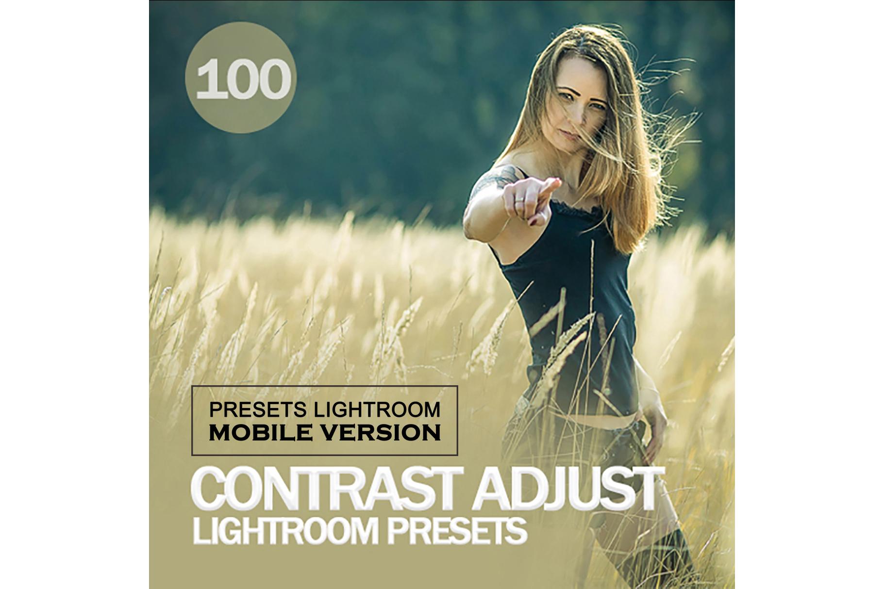 Contrast Adjust Lightroom Mobile Presets example image 1