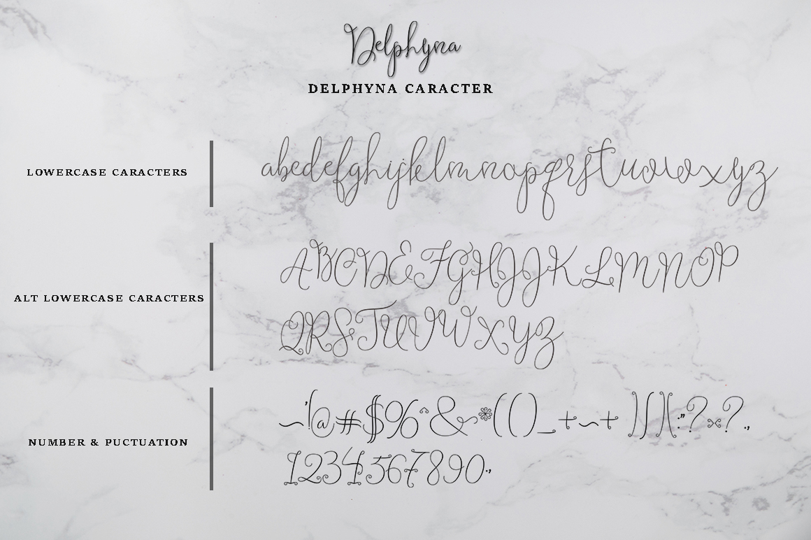 Delphyna example image 7