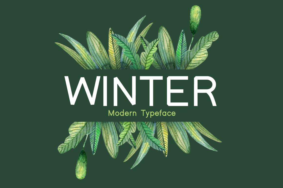 Winter example image 1