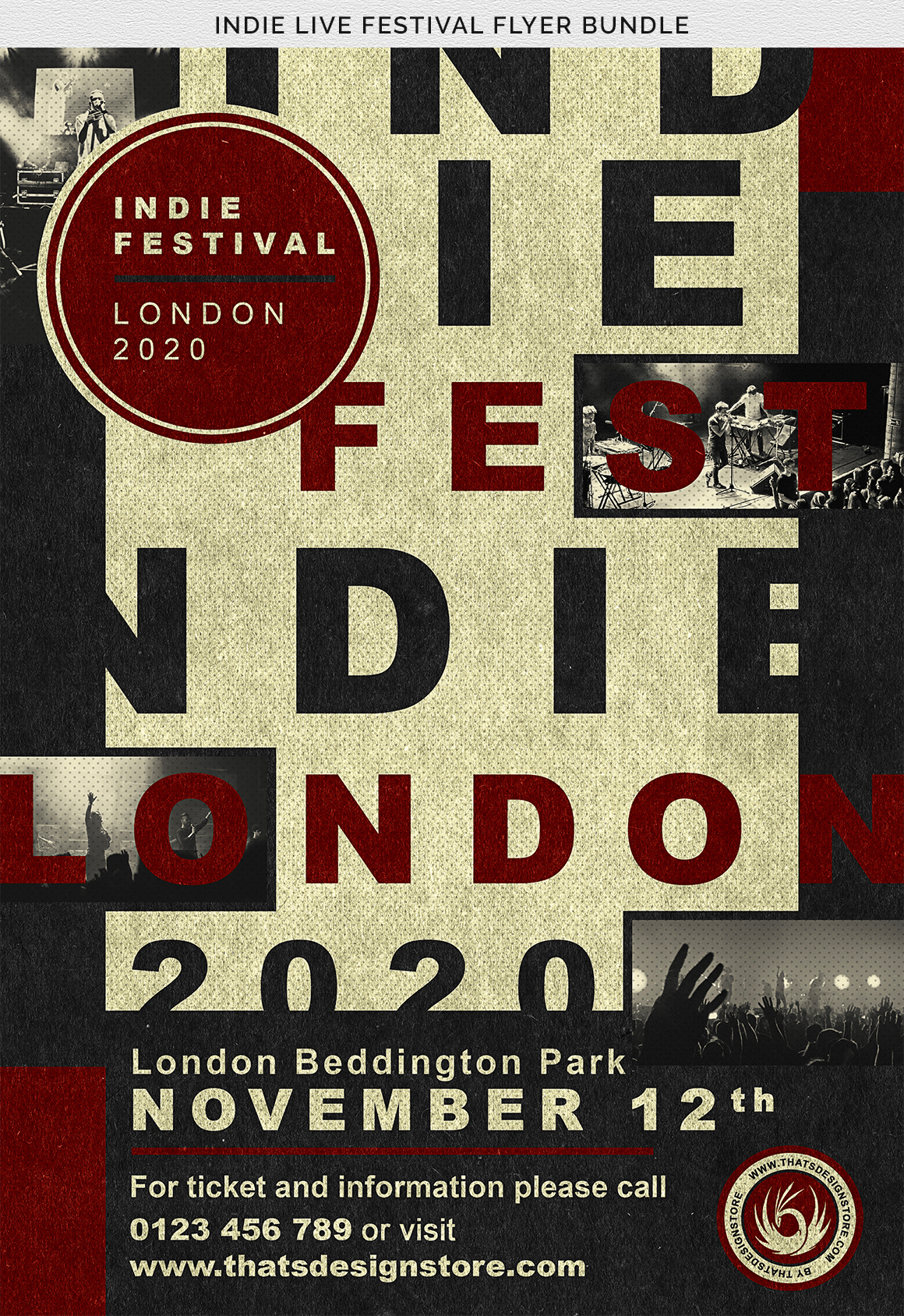 Indie Live Festival Flyer Bundle example image 9
