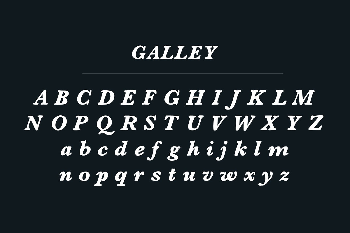 Galley | Serif Font example image 2