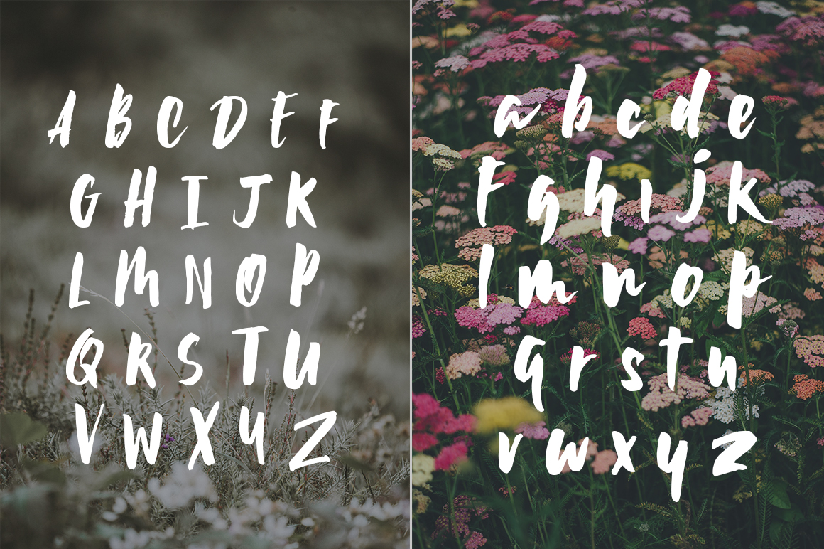 Wildflower Font example image 5