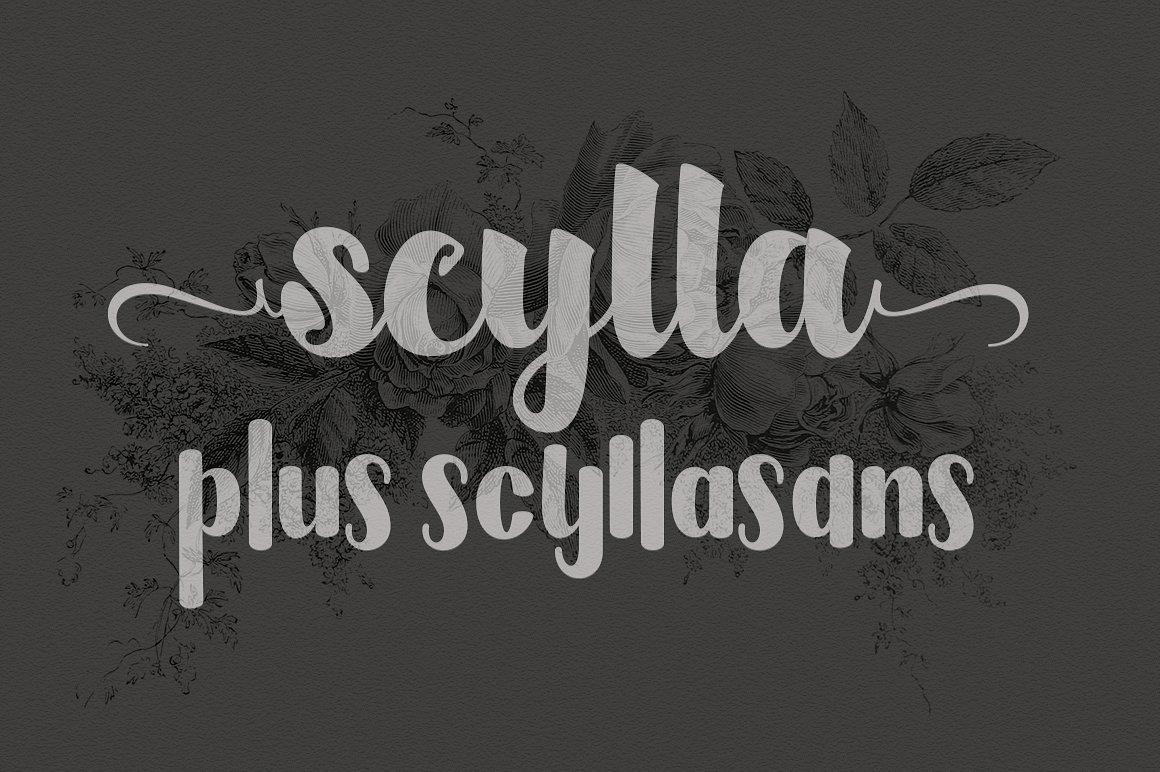Scylla example image 1