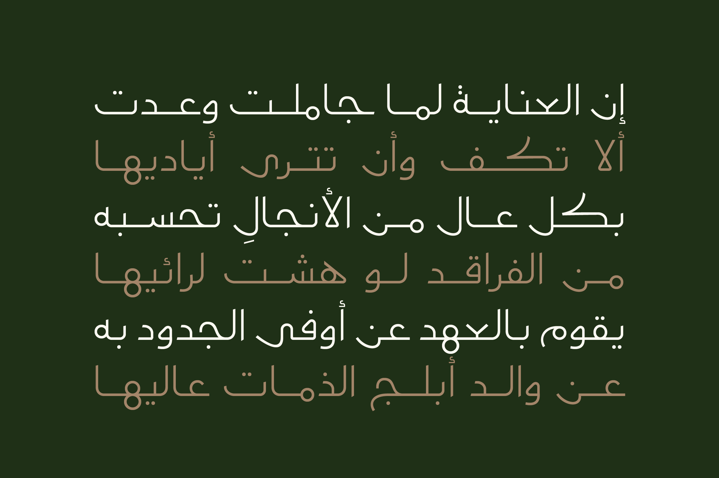 Moltaqa - Arabic Typeface example image 5