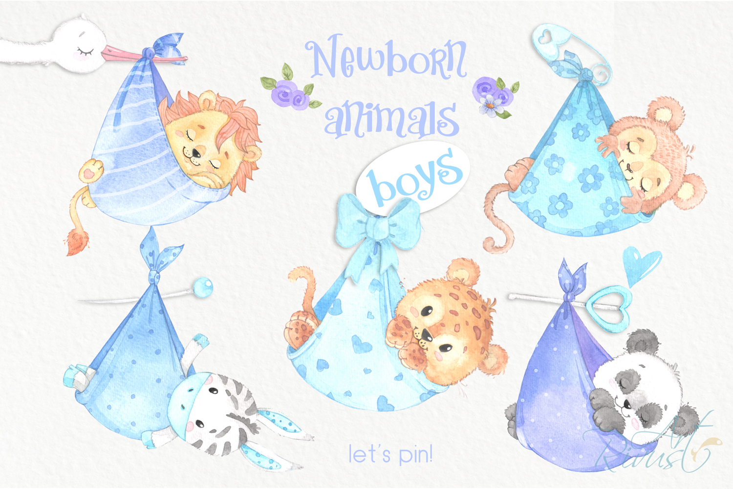 It's a boy Newborn animals clipart PNG download. African Saf example image 3