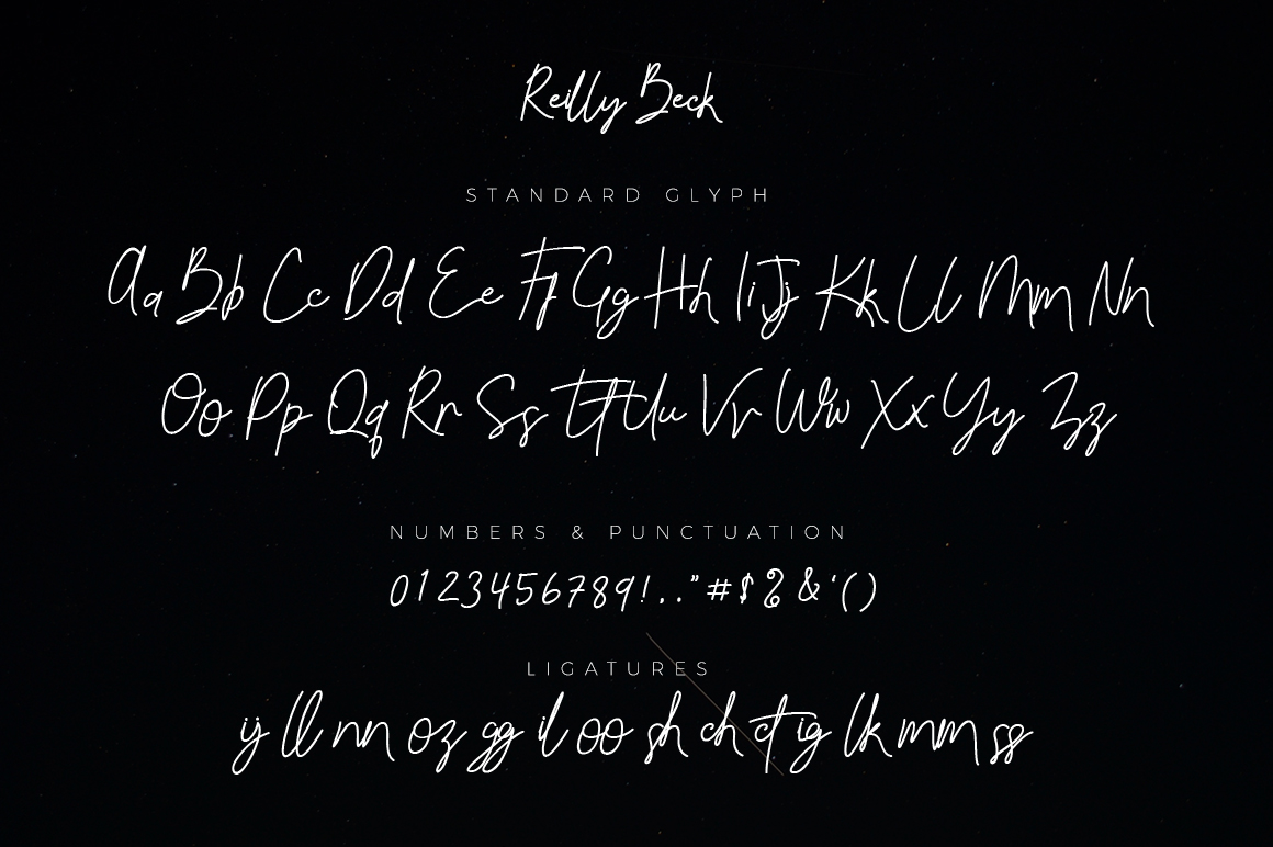 Reilly Beck - Signature Font example image 2