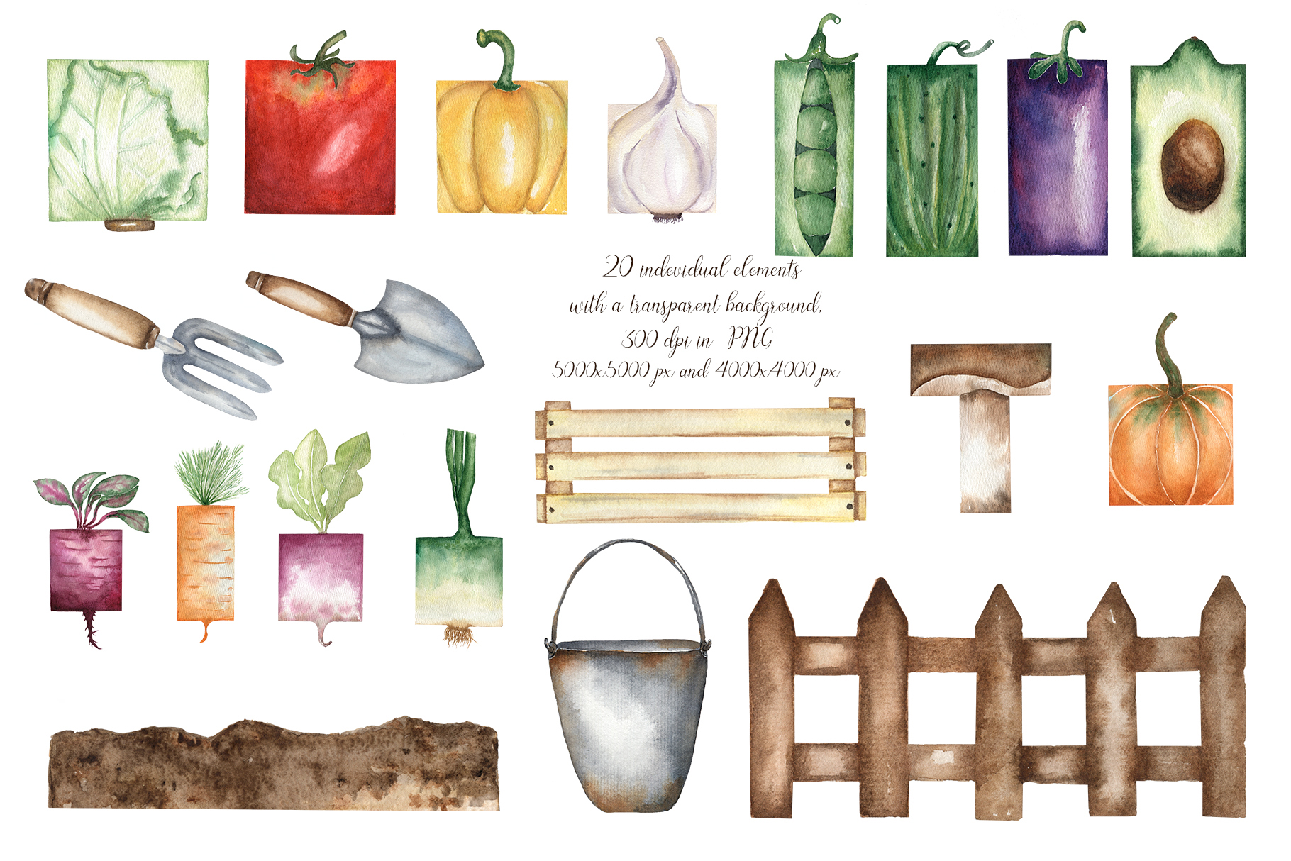 Watercolor vegetable garden example image 2