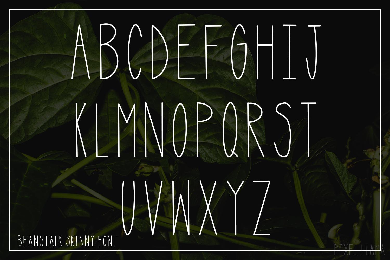 Beanstalk Skinny Font example image 4