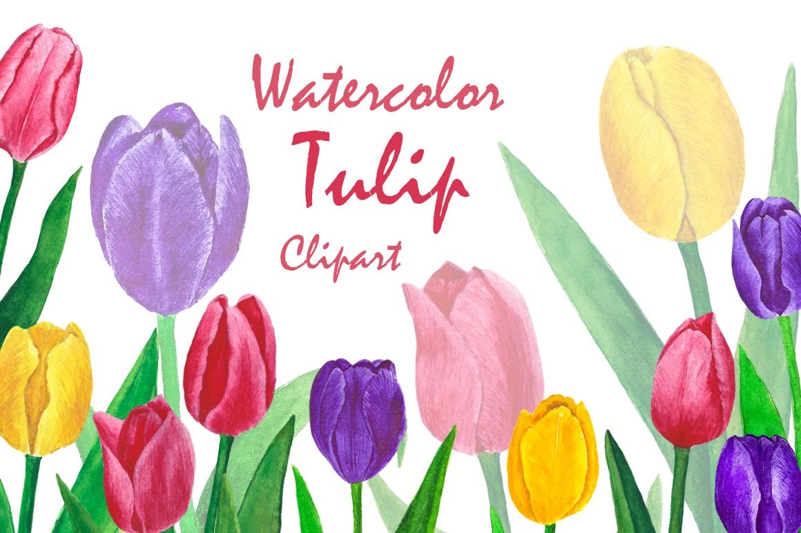 Flowers Tulips Watercolor example image 1