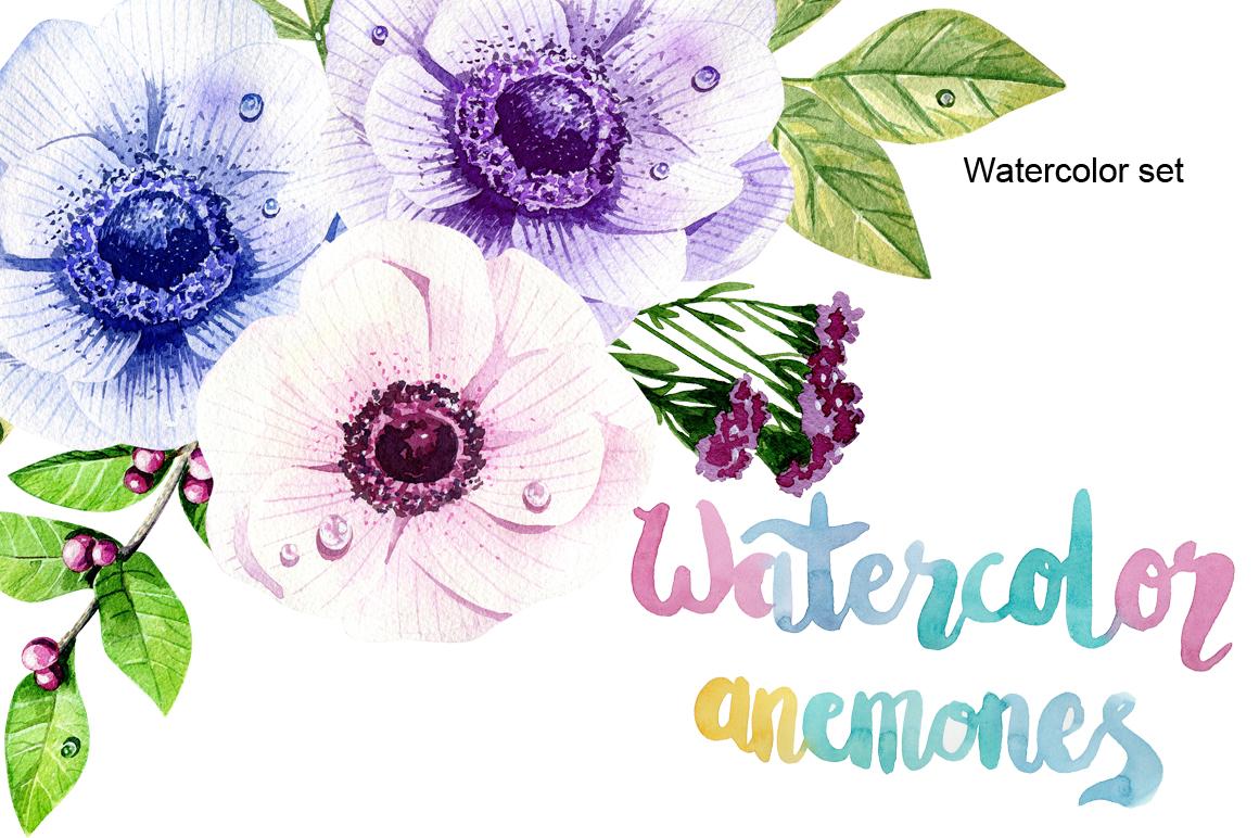 Watercolor anemones example image 1