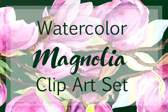 Watercolor Magnolia Clip Art Set example image 1