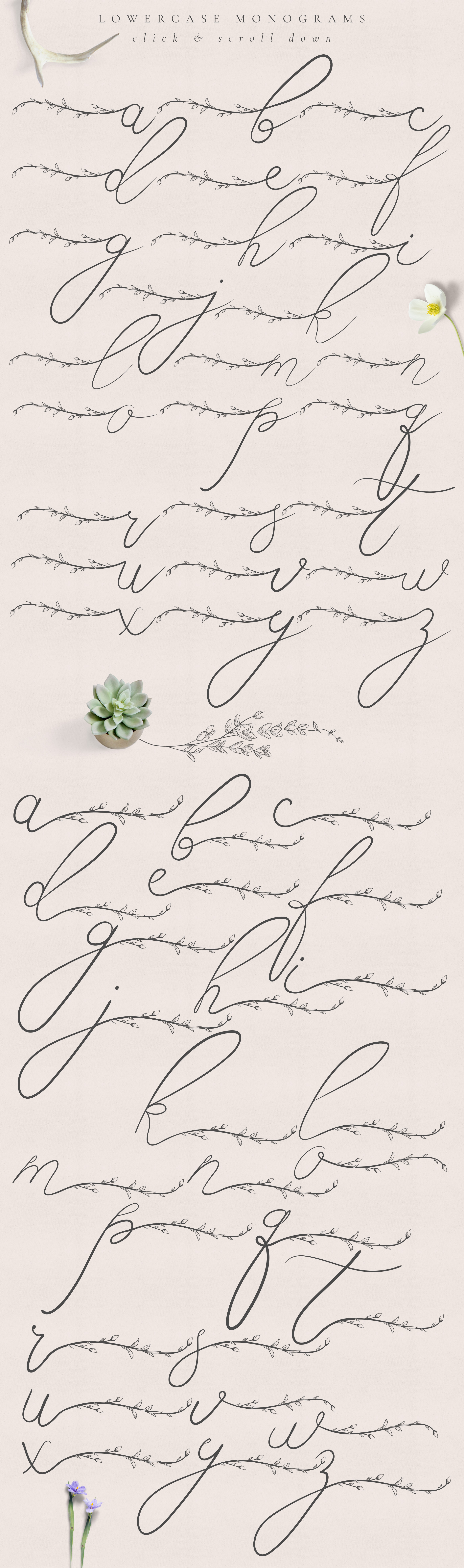Flowered Monogram & Logo Collection example image 4