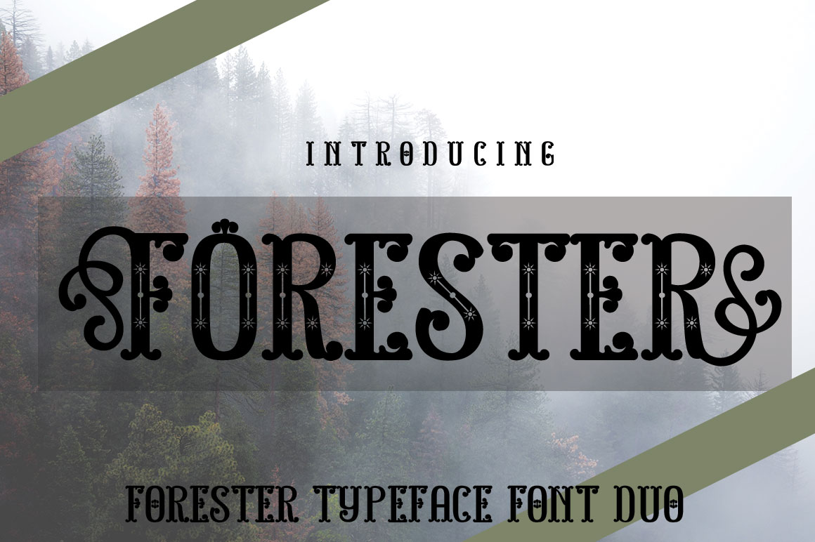FORESTER example image 2