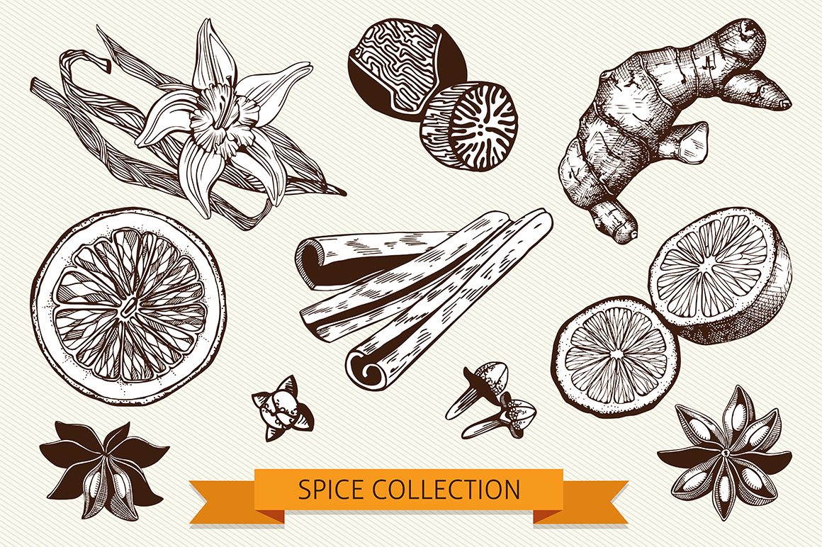 Ink Hand Drawn Spice Collection example image 3