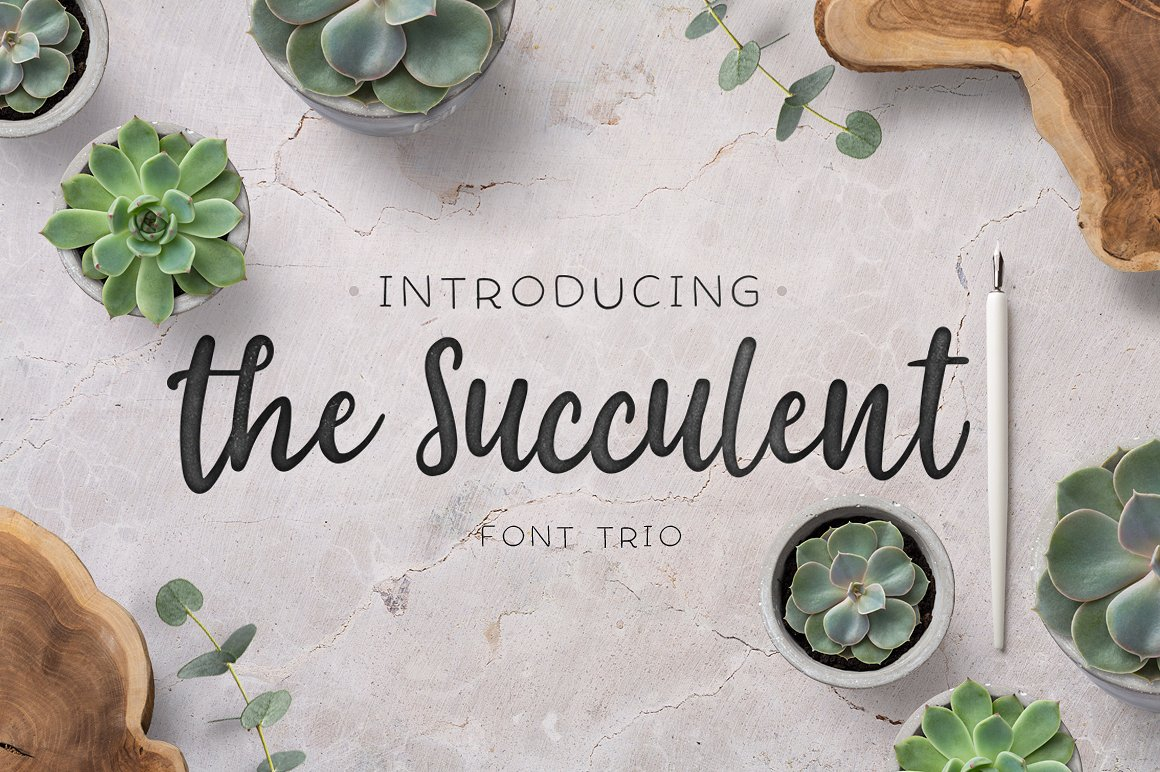 The succulent - font trio! example image 1