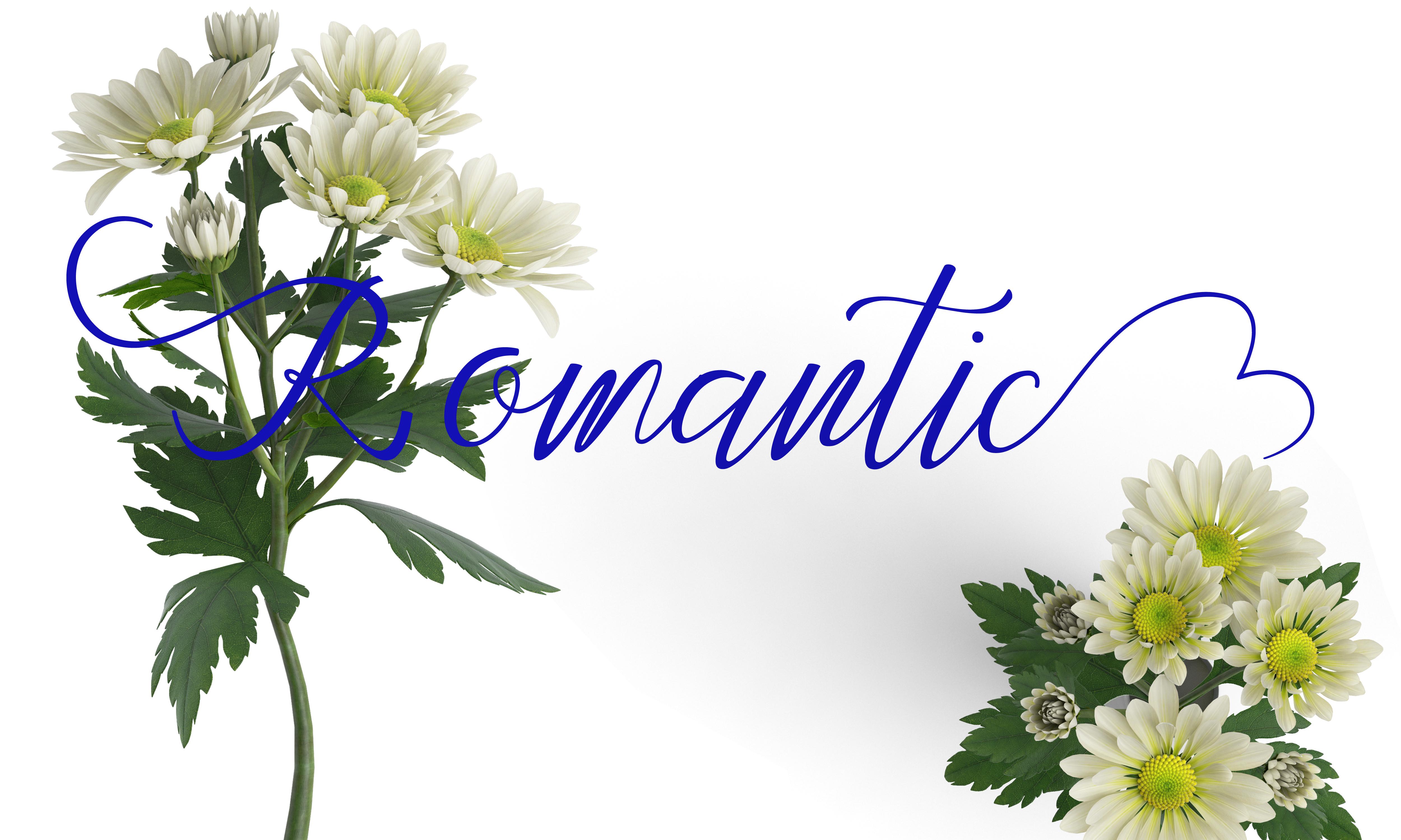 Feronika example image 4