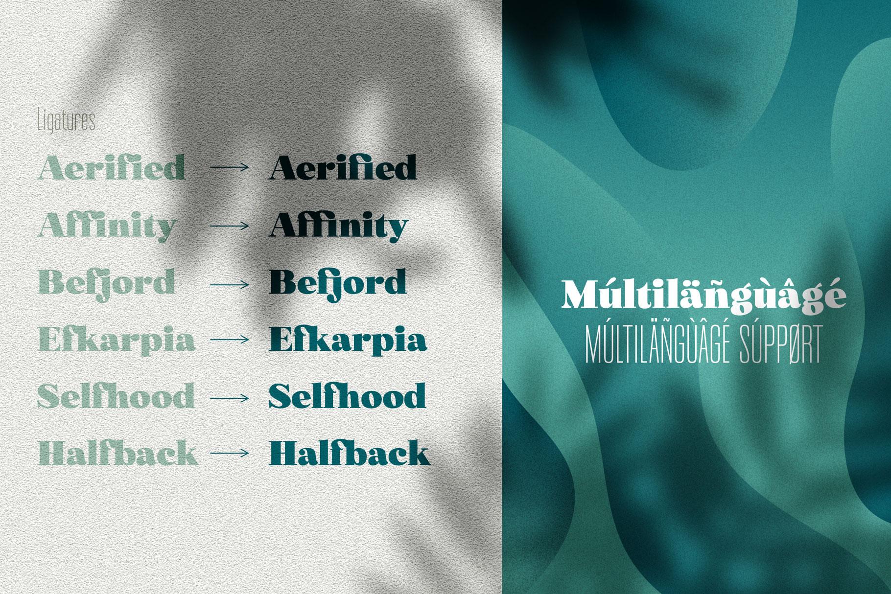 Norfolk Font Pair Bold & Narrow example image 5