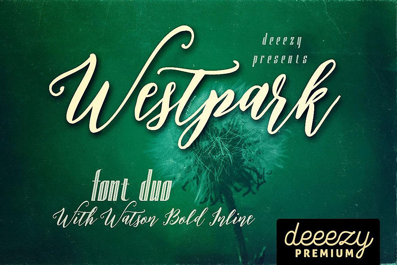 Westpark Script Font Duo example image 1