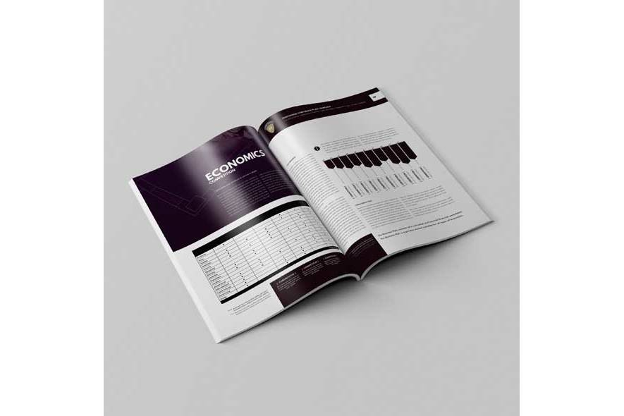 Professional Corporate Plan Template example image 5