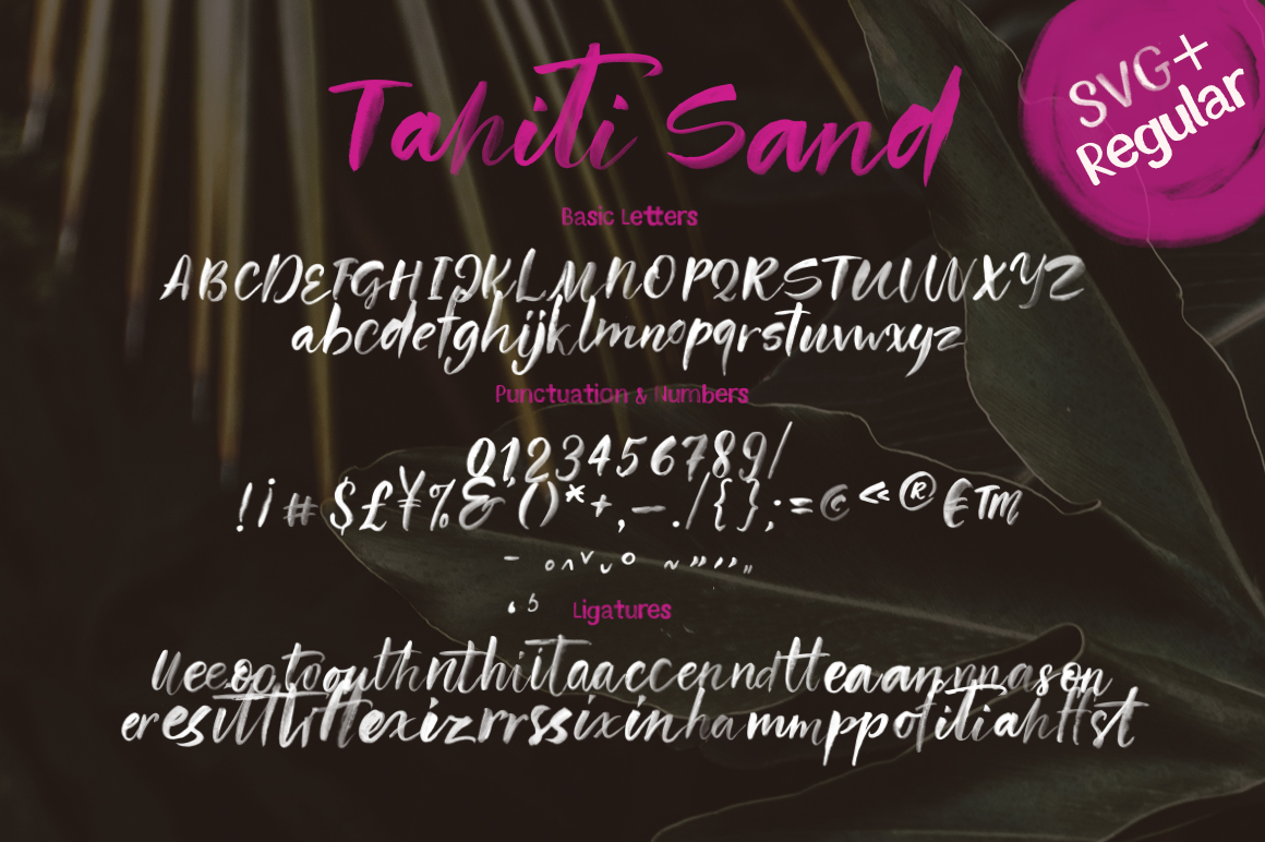 Tahiti Sand. Fonts and Graphics. example image 20