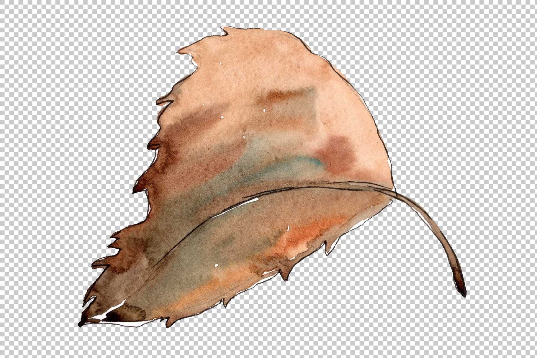 Sweet chestnut PNG watercolor leaves set example image 4