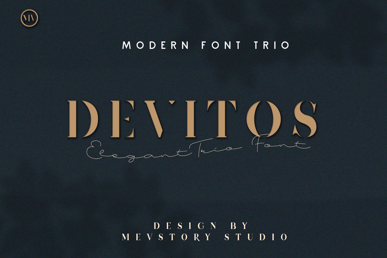 Devitos Modern & Elegant Serif Font example image 1