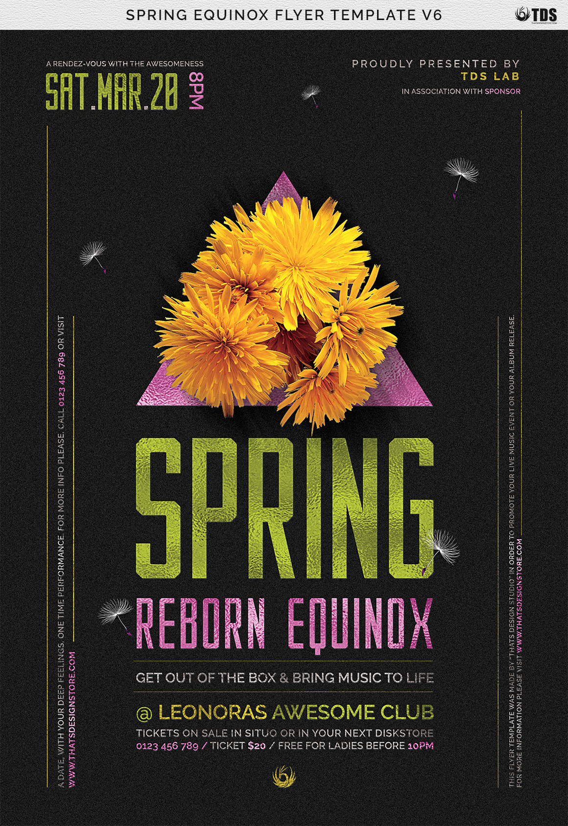 Spring Equinox Flyer Template V6 example image 7