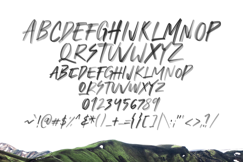 Flohart Svg Brush Font example image 6