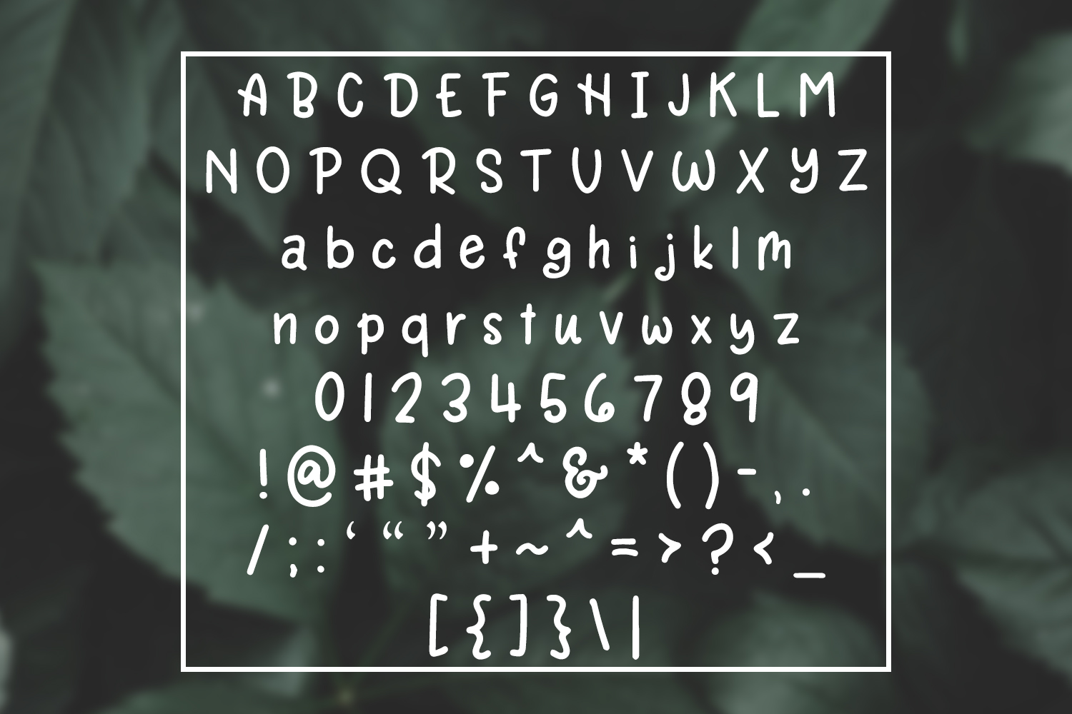 Rain Lily - Simple Monoline Handwritten Font example image 2